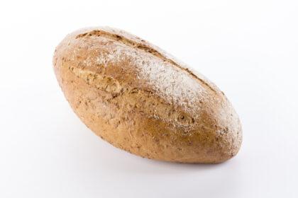 negro brood